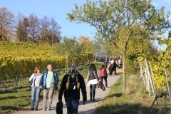 "Spazierweg zum ""Kirchberghäuschen"" in Bensheim"