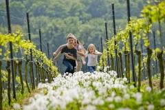 Spaß in den Weinbergen über Bensheim