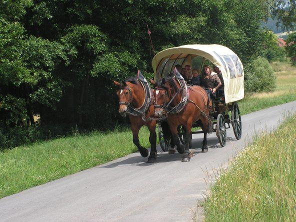 Planwagenfahrten und Kutschfahrten für unsere Gäste beim nahegelegenen Pferdehof-Birkenhof